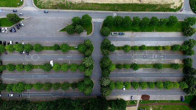 Pielęgnacja zieleni, terenów zielonych Kraków