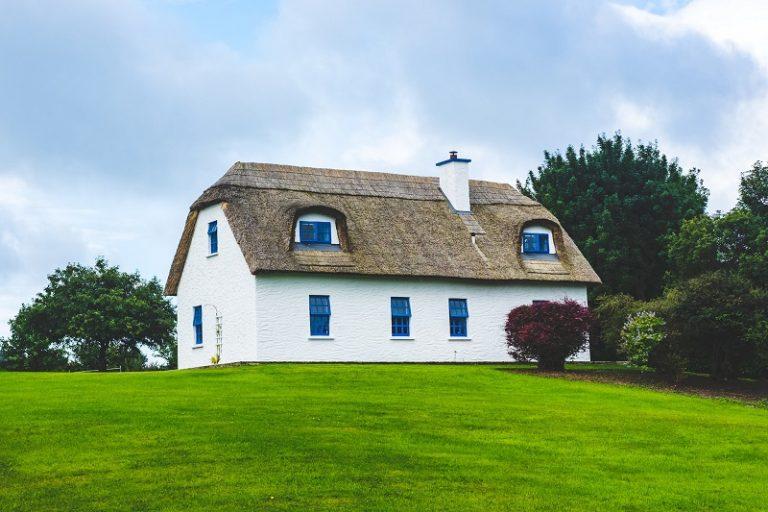 Jak utrzymać ładny trawnik przez cały rok?